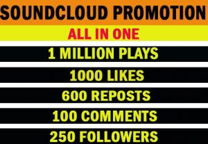 1 Million soundcloud plays with 1000 likes, 600 Reposts, 100 Comments, 250 Followers