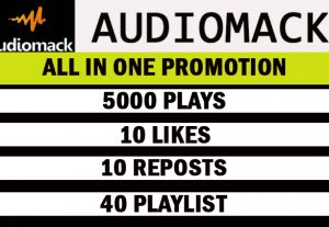5000 Audiomack Plays with 10 likes, 10 reposts, 40 playlists