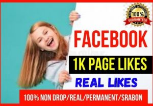Get Instant 1000 Real Facebook Page likes/Followers