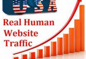 Real +100,000 Website Worldwide USA Traffic Instagram, YouTube, Twitter, LinkedIn Traffic Fast Deliver