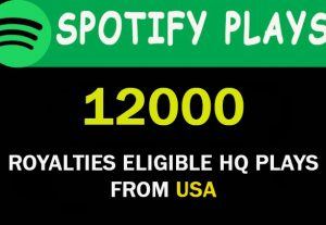 12,000 Spotify HQ plays from USA . Royalties Eligible plays