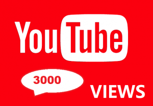 3000 YouTube Views Real And Organic