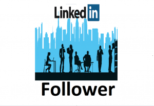 Give you 100+ LinkedIn Followers from Business Company Page