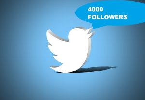 Give You 4000 Twitter Followers 100% Real & Non-Drop