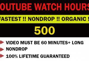 YouTube 500 organic H.Q watch hours monetization