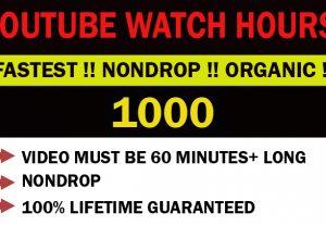 YouTube 1000 organic H.Q watch hours. Nondrop !
