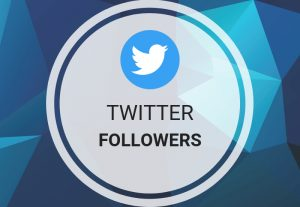 400+ TWITTER FOLLOWERS NON DROP AND HIGH QUALITY PROMOTION WITH INSTANT START