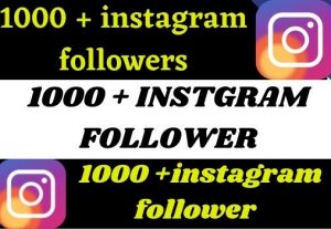 1000+ instagram followers non drop Real 100% grenteed