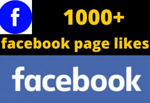 i will give you 1000+ facebook page like non drop life time permanent 100% organic real