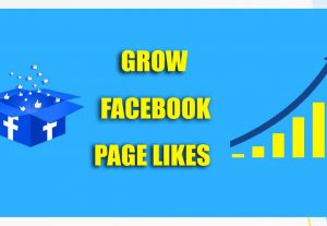 Add 2000 Facebook Page Likes 100% Non Drop