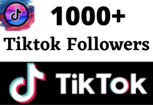 ADD 1000+ TIKTOK FOLLOWE, NON DROP AND HIGH QUALITY, SUPER FAST, FROM REAL ACTIVE USERS