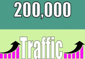 drive real top tier 200,000 web traffic visitors to your website