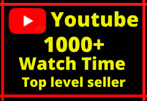 i will give you 1000+ youtube real Watch time Lifetime Guarantee