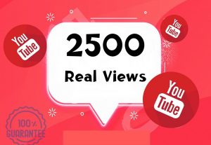 I will add 2500 real YouTube views with a 30-day guarantee