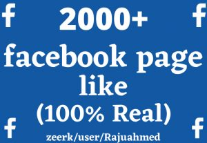 Get life time permanent 2000+facebook page like 100% organic but Real