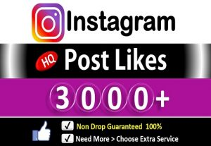 Get 3000+ Instagram Likes In Picture & Video, HQ Permanent  Guaranteed