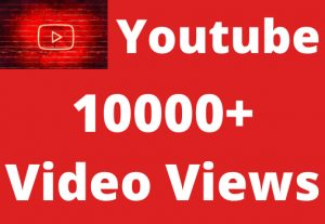 i will give you 10000+ youtube video views non drop butreal life time permanent