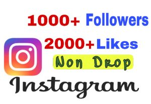 Get Package : 1000+ Followers & 2000+ Likes on Instagram. Non Drop!