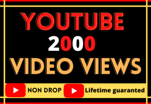 i will provide youtube video  2000 organic views. best quality 100% real and life time guarantee