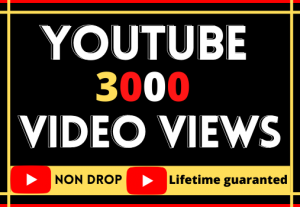 3000 + youtube video views.non-drop, organic best quality and life time guarantee