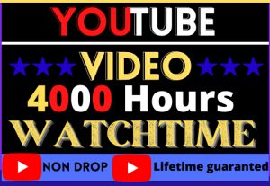 I WILL PROVIDE YOUTUBE VIDEO 4000 HOURS WATCH TIME.ORGANIC 100% REAL- BEST QUALITY AND LIFE TIME GUARANTEE