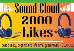 ADD 2000+ SOUNDCLOUD LIKES, FROM REAL ACTIVE USERS, SUPER FAST, FULLY NON DROP