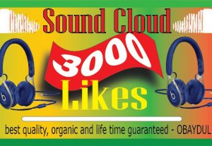i will do fast Soundcloud 3000 likes. non-drop, best quality -organic and life time guarantee