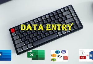 I will do any kind of data entry work