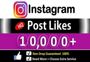 Get 10,000+ Instagram Likes In Picture & Video, HQ Permanent Guaranteed