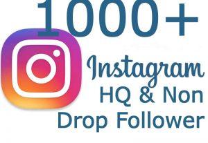 i will Add 1000+ HQ & Non Drop Instagram Followers