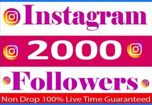 i Will Provide 2000+ Instagram Followers Real Active User Non Drop Live Time Guaranteed