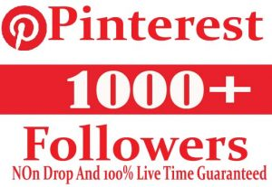 I Will Provide 1000+ Pinterest Followers Active User Non Drop And Live Time Guaranteed