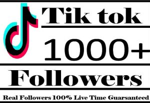 I Will Provide 1000+ Tiktok Followers Active User Non Drop And Live Time Guaranteed