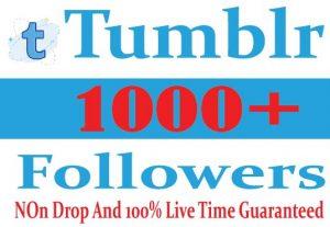 I will Provide 1000+ Tumblr Followers Active  User Non Drop Live Time Guaranteed