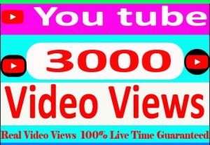 I Will Provide 3000+ YouTube video views Non Drop And 100% Live Time Guaranteed