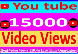 I wiil provide your 15000+ youtube video views Non Drop And 100% Live Time Guaranteed