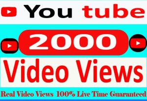 I will Provide 2000+ YouTube video views 100% Non Drop and Live Time Guaranteed