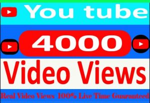 I Need Provide your 4000+ YouTube video Views Non Drop and 100% Live Time Guaranteed