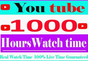 I Need provide 1000+youtube Watch Time Non Drop And 100% Live time Guaranteed
