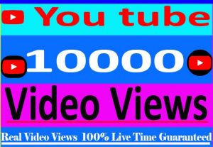 I Need provide your 10000 + youtube video views Non Drop and 100% Live Time Guaranteed