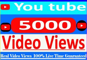I Need Provide your 5000+ YouTube Video views Non Drop and 100% Non Drop Live Time Guaranteed