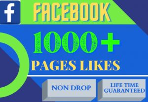 i will provide 1000+ Facebook pages likes. organic 100% real and life time guarantee.