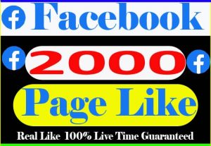 I Will provide 2000+ Facebook pages Like And Non drop but Live Time Guaranteed