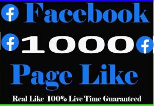 I will provide 1000+ facebook pages Like And Non Drop Live time Guaranteed