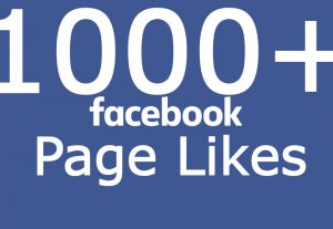 Add You Fast 1000+ Facebook Page Likes None Drop