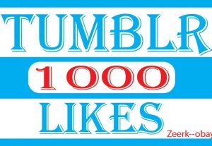 I Will Do Fast Tumblr 1000 likes . High Quality, 100% Real and organic ,- life time permanent