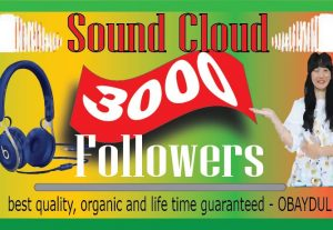 i will provide sound cloud 3000 followers. best quality, lifetime permanent 100% real and organic