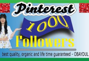 i will do pinterest 1000 followers. non-drop, high quality, and organic
