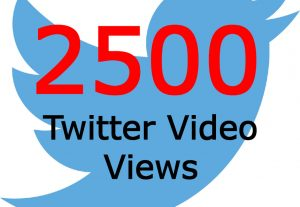 I will add you 2500 Twitter Video Views