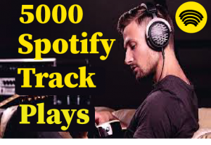 5000+ Spotify track plays,Best quality ,non drop and 100% real